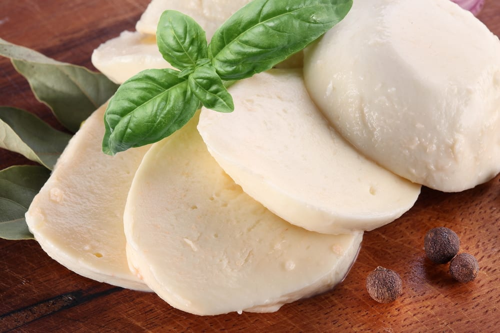 cheese mozzarella