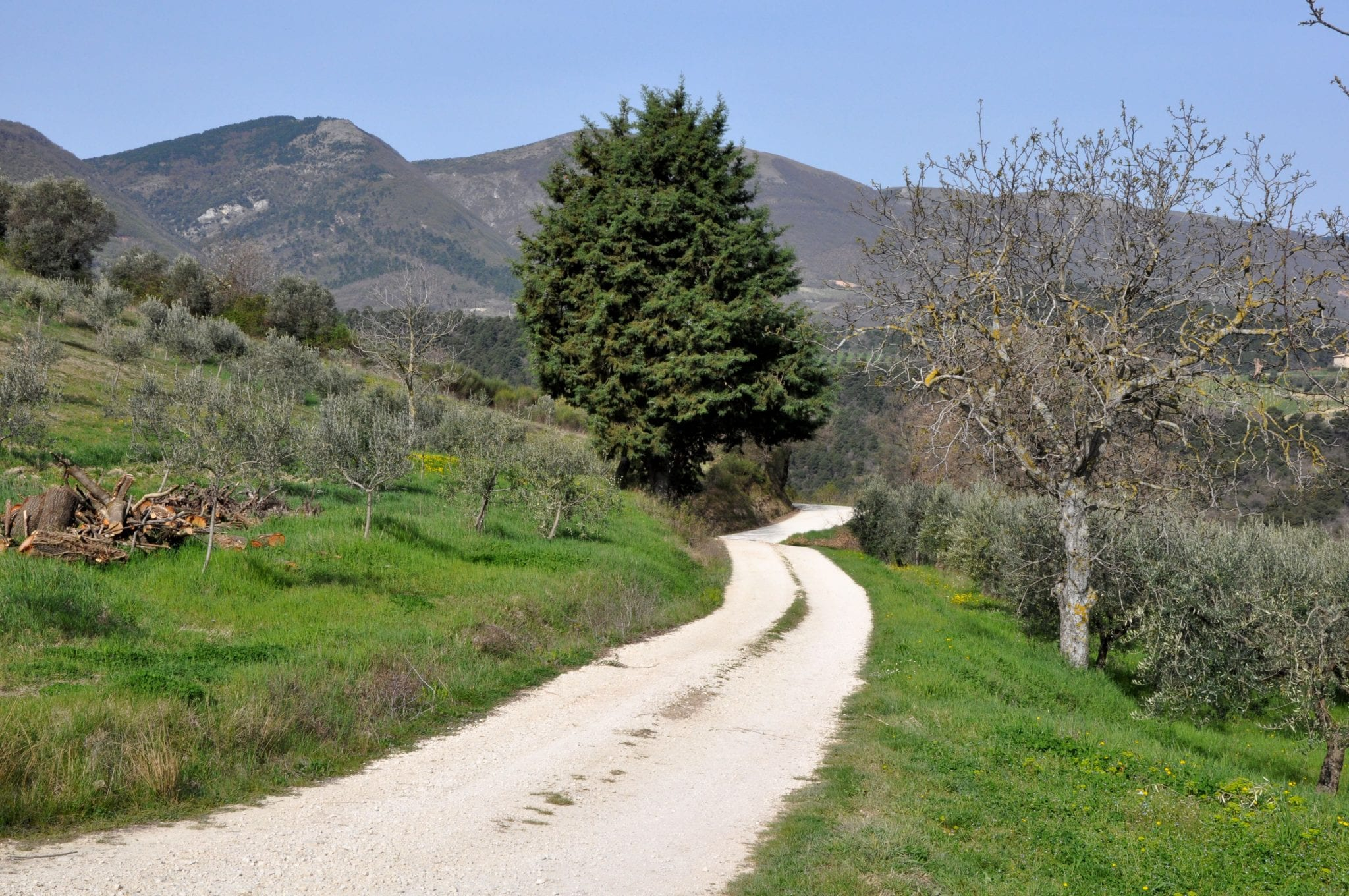 Roads in Italy's countryside can be difficult!