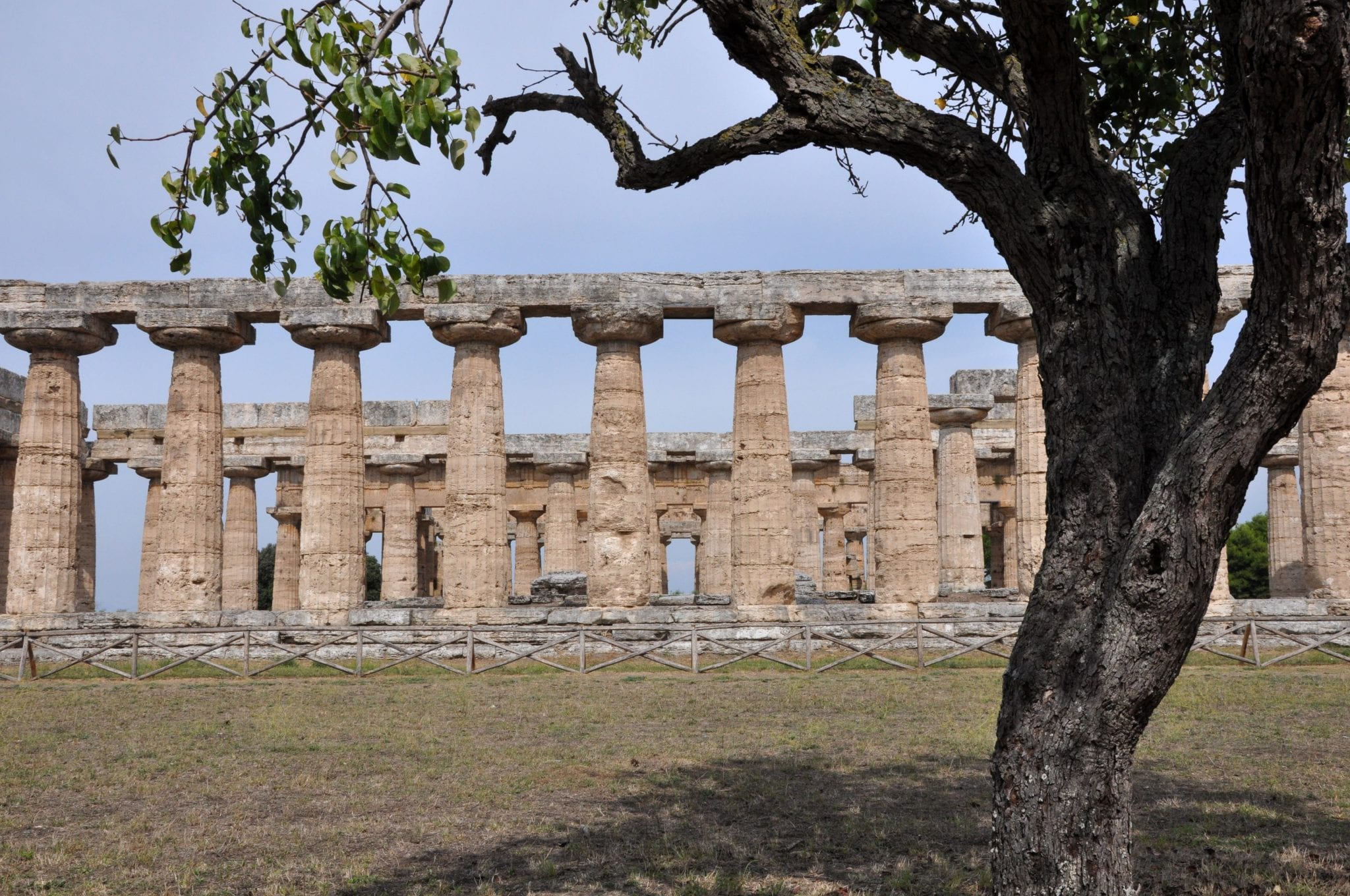 Ancient ruins in Paestum, Italy