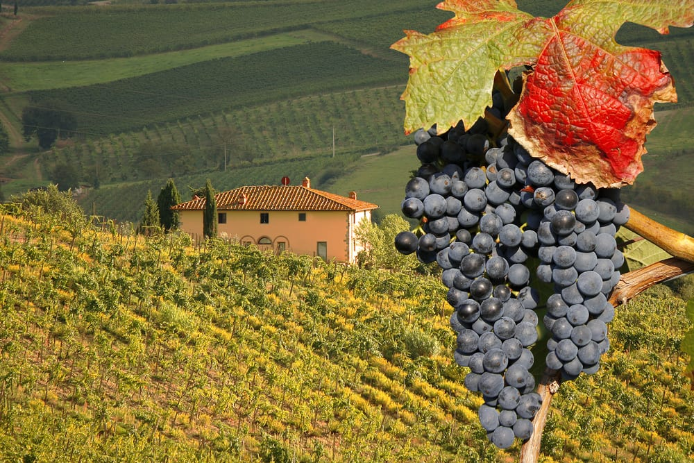 The Chianti wine country is Easy day trip from Florence, Italy