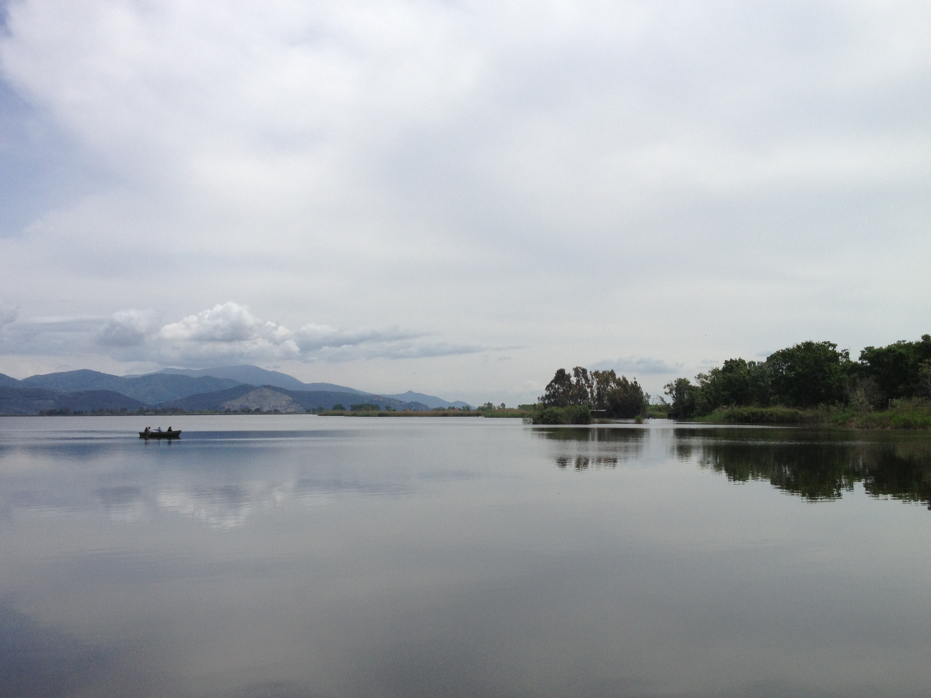 Lake_Massaciuccoli