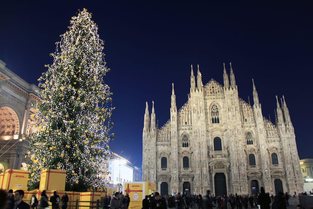Worlds Biggest Christmas Tree