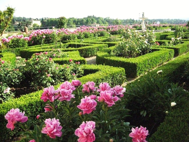 the most beautiful gardens in florence walks of italy blog - Most Beautiful Rose Gardens In The World