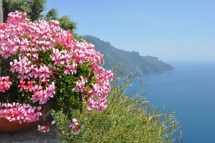 Italy in spring: simply gorgeous!